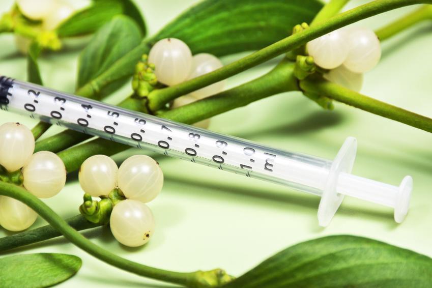 Misteltherapie, Misteln und Spritze